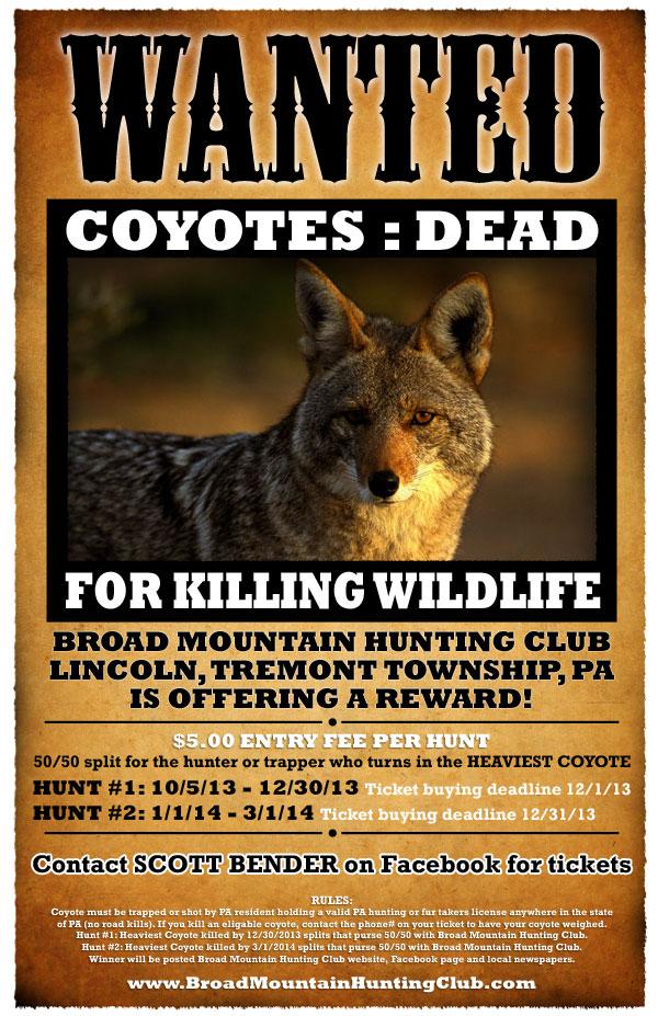 Coyote Hunt!
